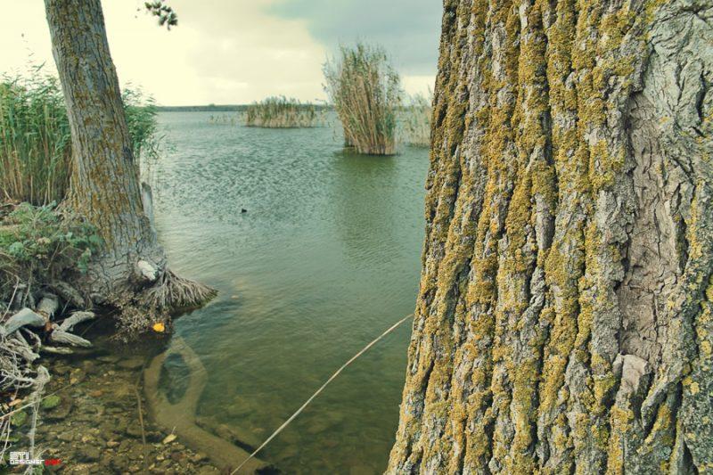 Природна и пейзажна фотография от Светослав Иванов - Есен в Дуранкулак