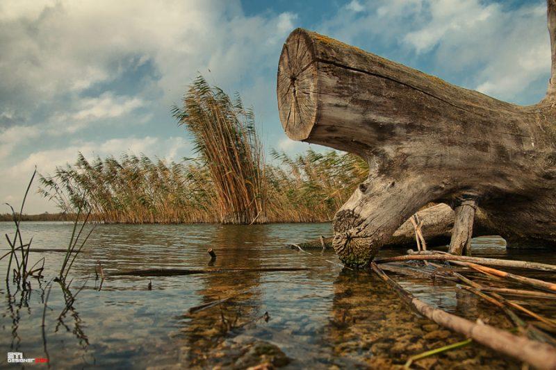 Природна и пейзажна фотография от Светослав Иванов - Есен в Дуранкулак IV