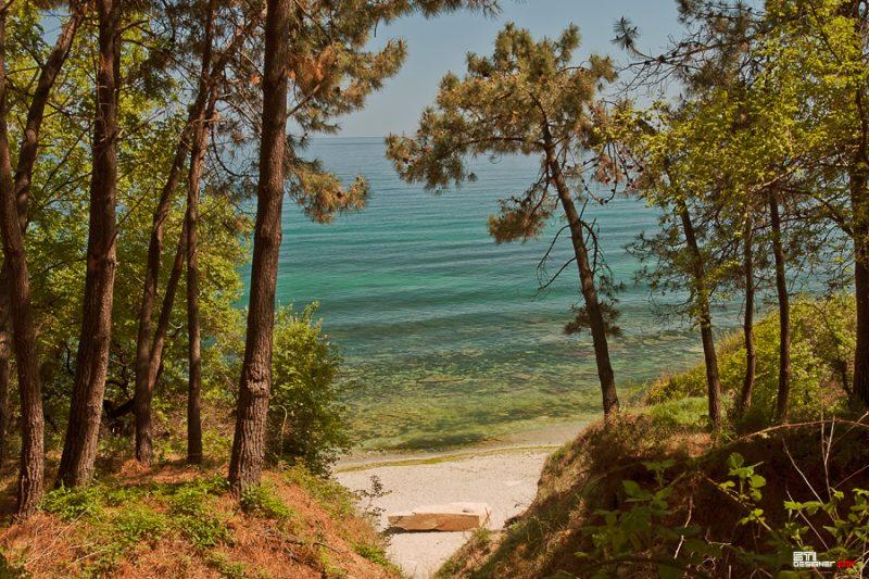 Светослва Иванов цветна фотография на плаж Фичоза от гората