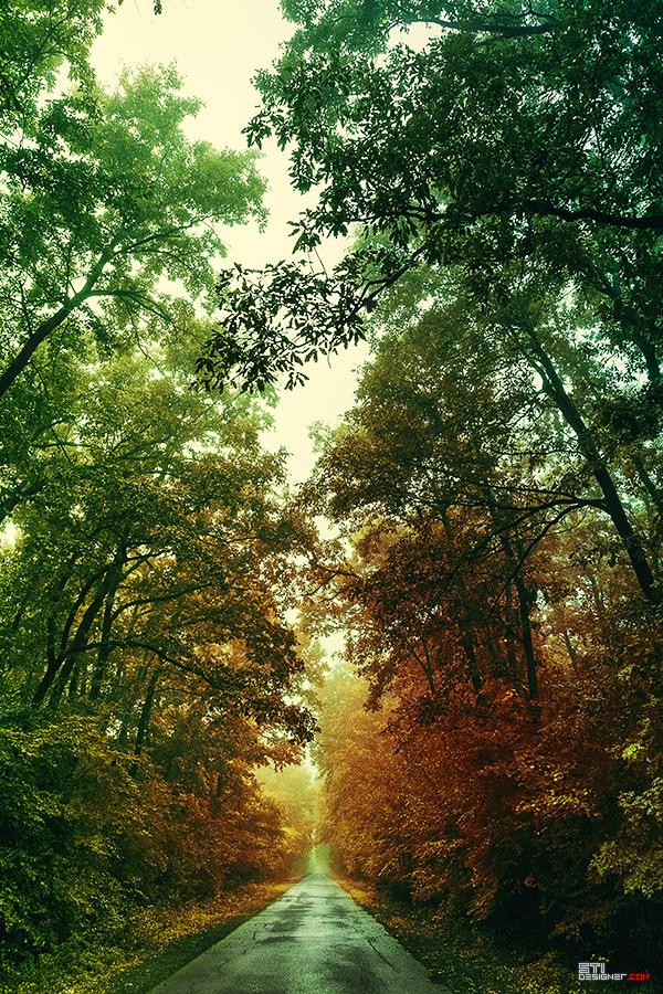 Есеннен път, природна и ландшафтна цветна фотография Светослав Иванов